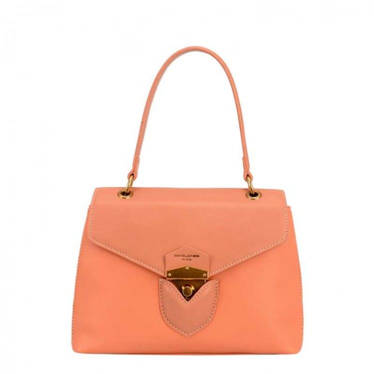 Ladies fashion handbag David Jones | Secret