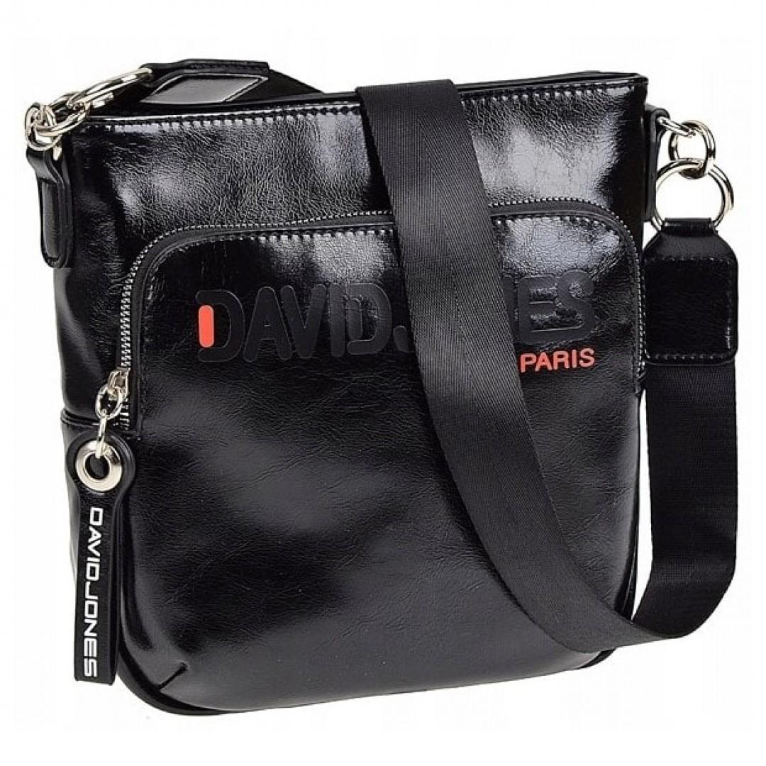 Ladies fashion handbag David Jones | Brooklyn