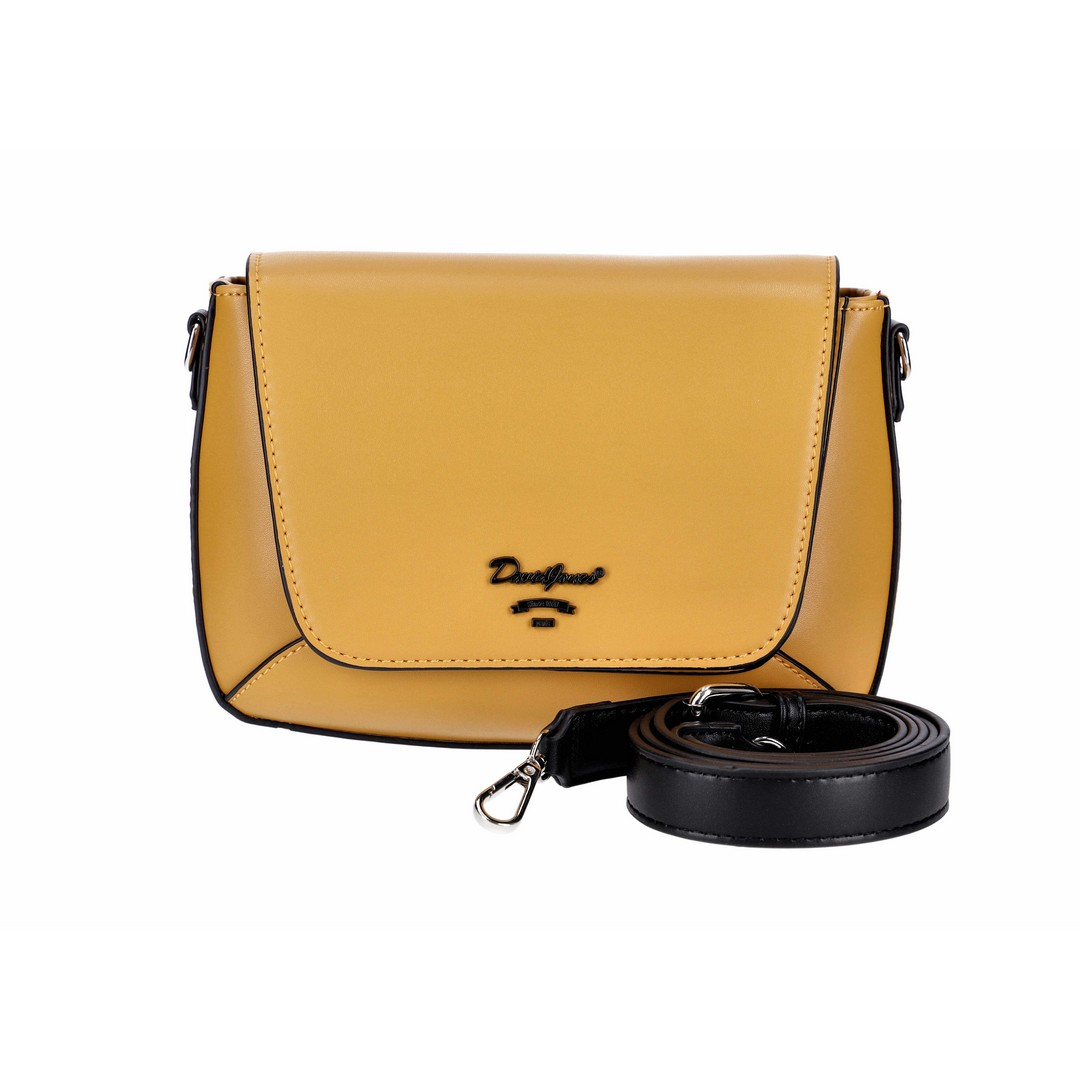Ladies fashion handbag David Jones | Suity